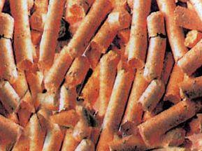 Holzpellets, eine kostengünstige Art zu heizen - Killus Technik