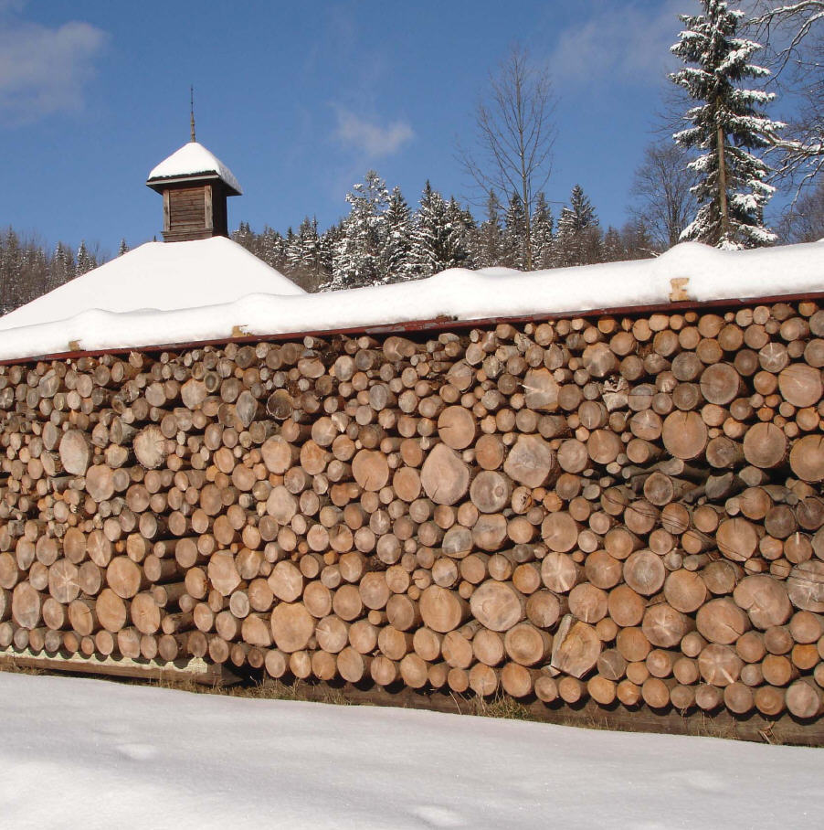 Holz-der nachwachsende Rohstoff für die Heizung Killus Technik
